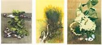 piante, mimose e girasole (3 works) by giancarlo cazzaniga