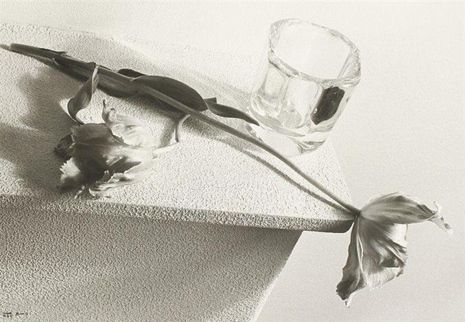 tulpen by ilse bing