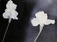two irises on grey by jo self