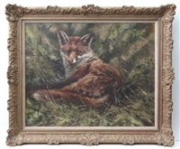 the satisfied fox by mick cawston