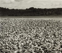 maine by spencer tunick