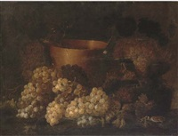 grapes on the vine, a copper planter and a bird on a ledge by aniello ascione