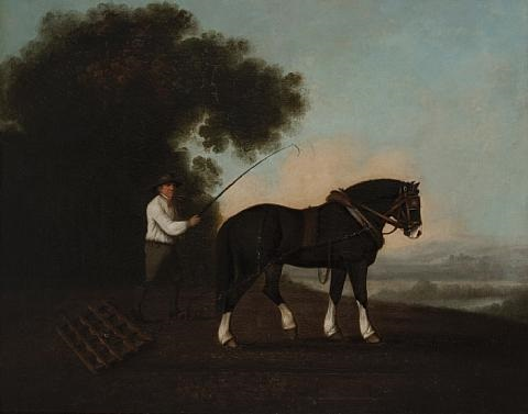 the harrower by george stubbs