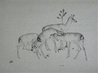 deer by robert s. austin