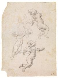 studio di amorini in volo by domenico piola