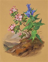 bergblumen mit ansicht des klosters tegernsee by franz xaver nachtmann