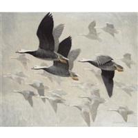 emperor geese by peter scott