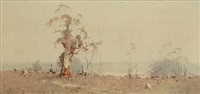 gum trees by william sturgess