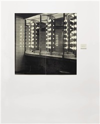 the bathroom (in 4 parts) by lorna simpson