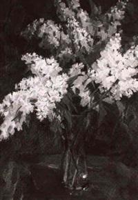 fliederstilleben by josefine batke-koller