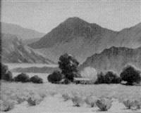 desert landscape by herbert van acker