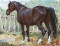 the saddle horse by frank b. hoffman