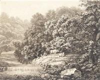 kleiner wasserfall mit einem hirten, der mit seinem hunde und zwei rindern auf der uferwiese vor hohem gebüsch rastet by christoph nathe