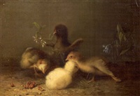 four chicks by mary russell smith