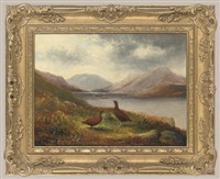 grouse, loch lomond by tom hold