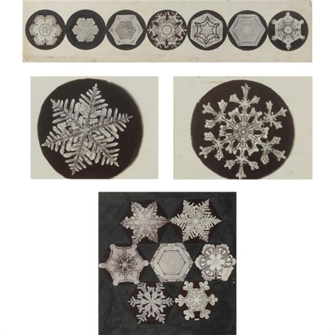 Snowflakes a group of 40 by Wilson A  Bentley on artnet