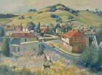 country town, nsw by john terence santry