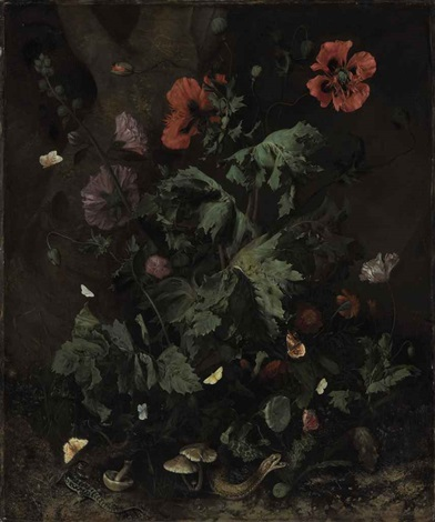 a forest floor still life by nicolaes lachtropius