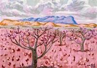 cerezos en flor en luz de la montaña by francisco san josé