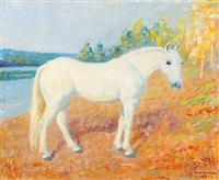 a white horse by max nathan