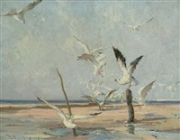 a flock of seagulls on the beach by vernon ward