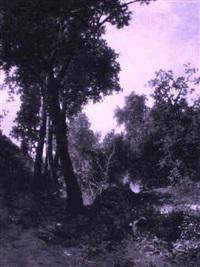 boscaglia presso albano by federico cortese