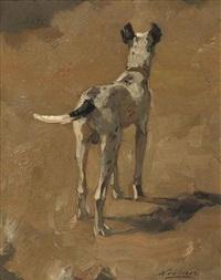 een hond (studie) by nicolaes van der waay
