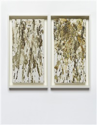 untitled (birdshit) (diptych) by dan colen
