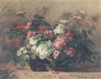 geraniums and pelargoniums in a basket by julie weber