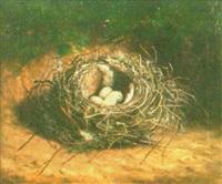 still life of bird nest by ben hold