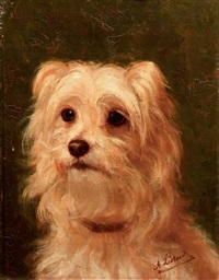 cairn terrier by alice leotard
