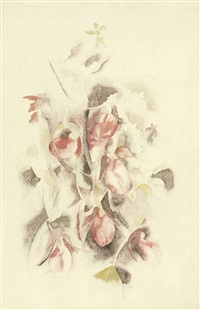 pink lady slippers by charles demuth