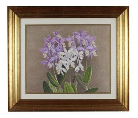 still life of orchids by kate cameron