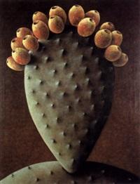 cactus en fruit by yannick vu