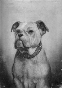 head of a boxer by j.l. wardleworth