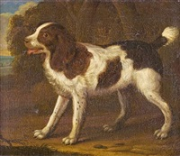 spaniel in a landscape by george stubbs