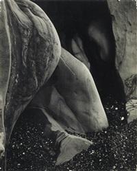 Nude 189 N by Edward Weston on artnet Auctions