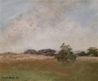 pejzaż z pochmurnym niebem nad łąką by jerzy gnatowski