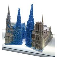 chartres & notre-dame by roger hiorns