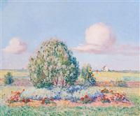 parterre fleuri by ferdinand puigaudeau