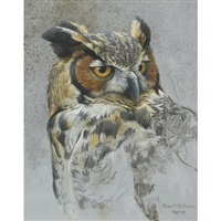 great horned owl (study) by robert bateman