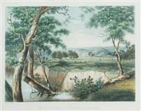 the city of adelaide from the torrens near the reed beds. plate 1 from south australia illustrated by george french angas