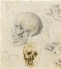 crâne humain de profil et visage d'écorché de face. études d'os - recto; deux études d'enfants et de feuilles - verso by auguste rodin