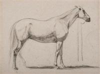 étude de cheval (study) by eugène fromentin
