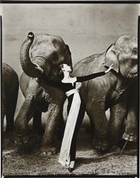 dovima with elephants, evening dress by dior, cirque d'hiver, paris by richard avedon