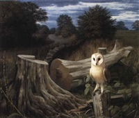 a barn owl at dawn, eccup by raymond booth