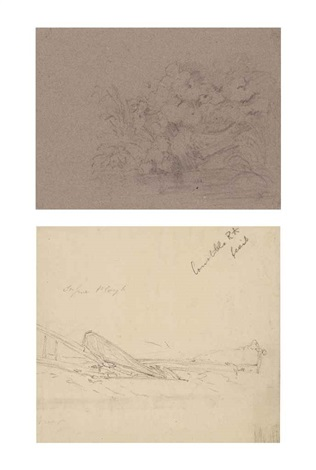 study of plants and rocks a drawing of a plough recto and sketch of a dogs head verso 2 works by john constable