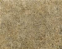 élément de sol au petit diapré by jean dubuffet
