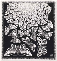 butterflies (b. 369) by m. c. escher