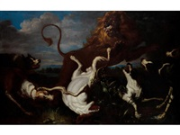 a lion hunt by david de coninck